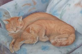Quantity of framed watercolours and pastels including studies of cats, still lifes, floral