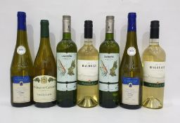 Seven bottles of assorted white wine to include Castno Ecologico Macabeo Organic 2016 and Balduzzi