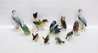 Twelve Karl Ens porcelain model birds to include: toucan, owls, budgerigar and othersCondition