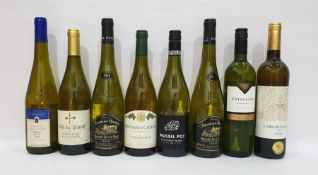Eight bottles of assorted white wine to include Carlos Plaza Macabeo 2016 and Les Grandes Cailloux
