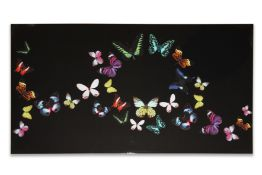 36 Arthouse Bright Butterfly Canvas 6in