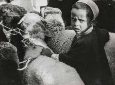 BAUHAUS. – Ré Soupault(1901-1996). Joseph bei den Schafen seines Vaters Israel. Fotografie, 1937/38,