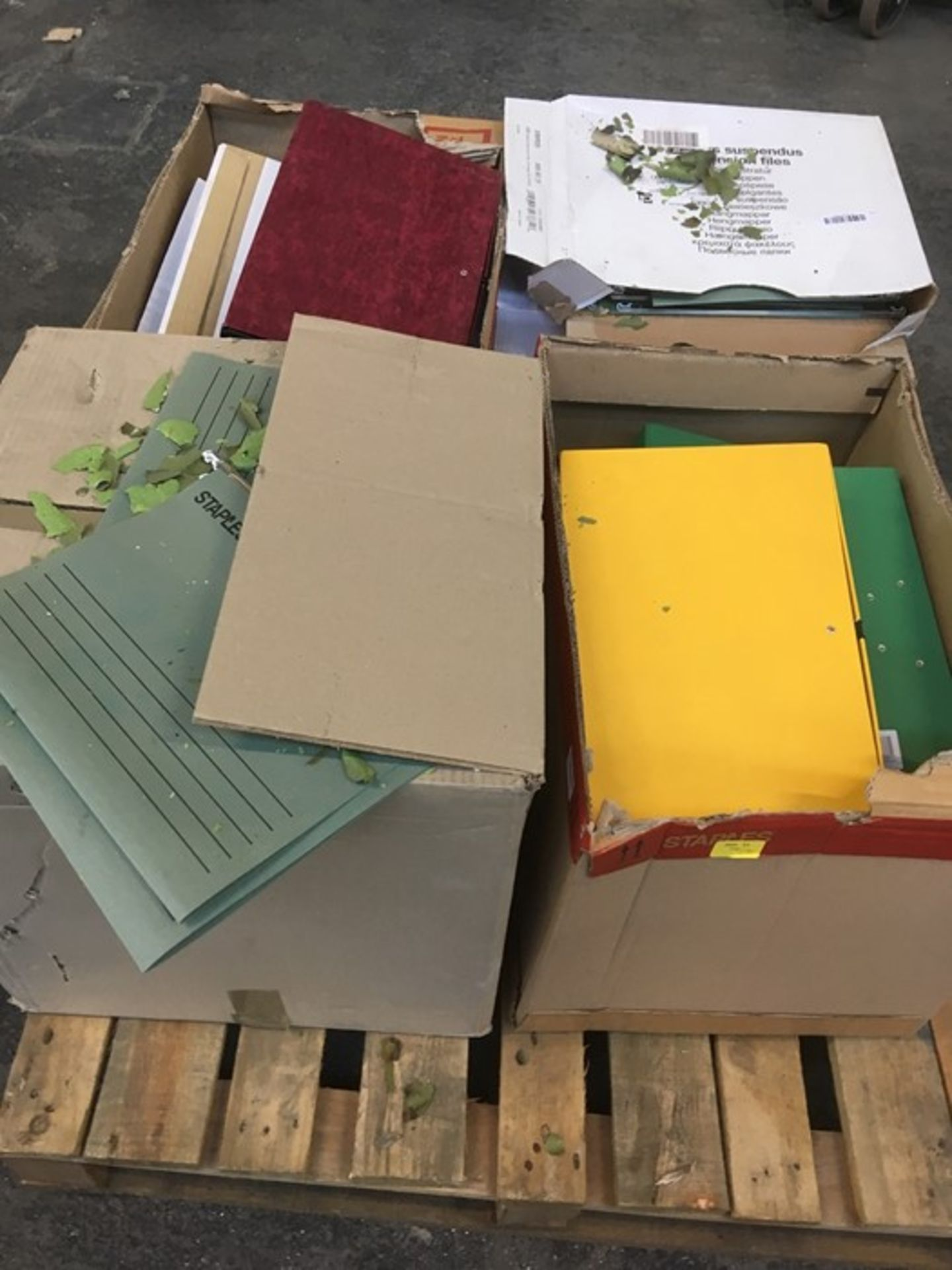 Lotto 120 - 1 LOT TO CONTAIN ASSORTED FILING EQUIPMENT / INCLUDING FILING BOXES, BINDERS AND SUSPENDED FILES /