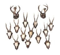 A pair of central European antler and bone mounted wall appliques