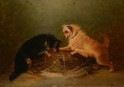Attributed to George Armfield (British 1810-1893)Terriers ratting