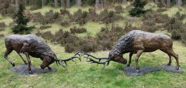 John Cox (British, 1952-2014), A Pair of Red Deer Stags