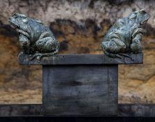 Brendan Hesmondhalgh (British, b. 1973), Stand off Toads