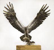 Piers Mason (British, b. 1974), Osprey