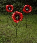 Kenny Roach, Poppies