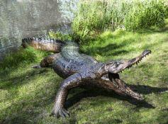 John Cox (British, 1952-2014), Crocodile