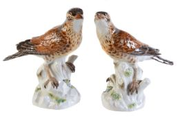 A pair of Meissen models of mistle thrushes