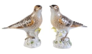 A pair of Meissen models of song thrushes