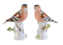 A pair of Meissen models of bullfinches