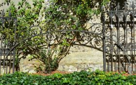A Gothic Revival wrought iron gate arch