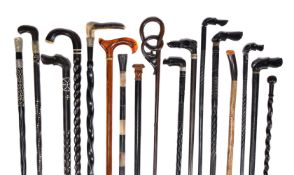 A collection of approximately 17 walking sticks