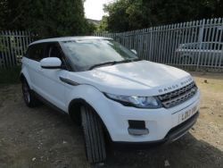 Cars, Vans and Trailers Auction