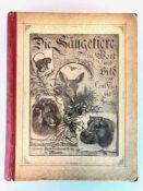 """Vogt, Carl / Friedrich Specht: """"Die Säugetiere in Wort und Bild"""", München, 1883.Verlagsanstalt für"""