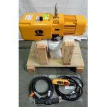 Harrington Hoists & Cranes ER010LD 1-Ton Electric Hoist - Gilroy