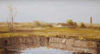 Sumpflandschaft mit Bauernhaus vermutlich Ungarisch, Öl auf Leinwand auf Holzplatte aufgelegt,
