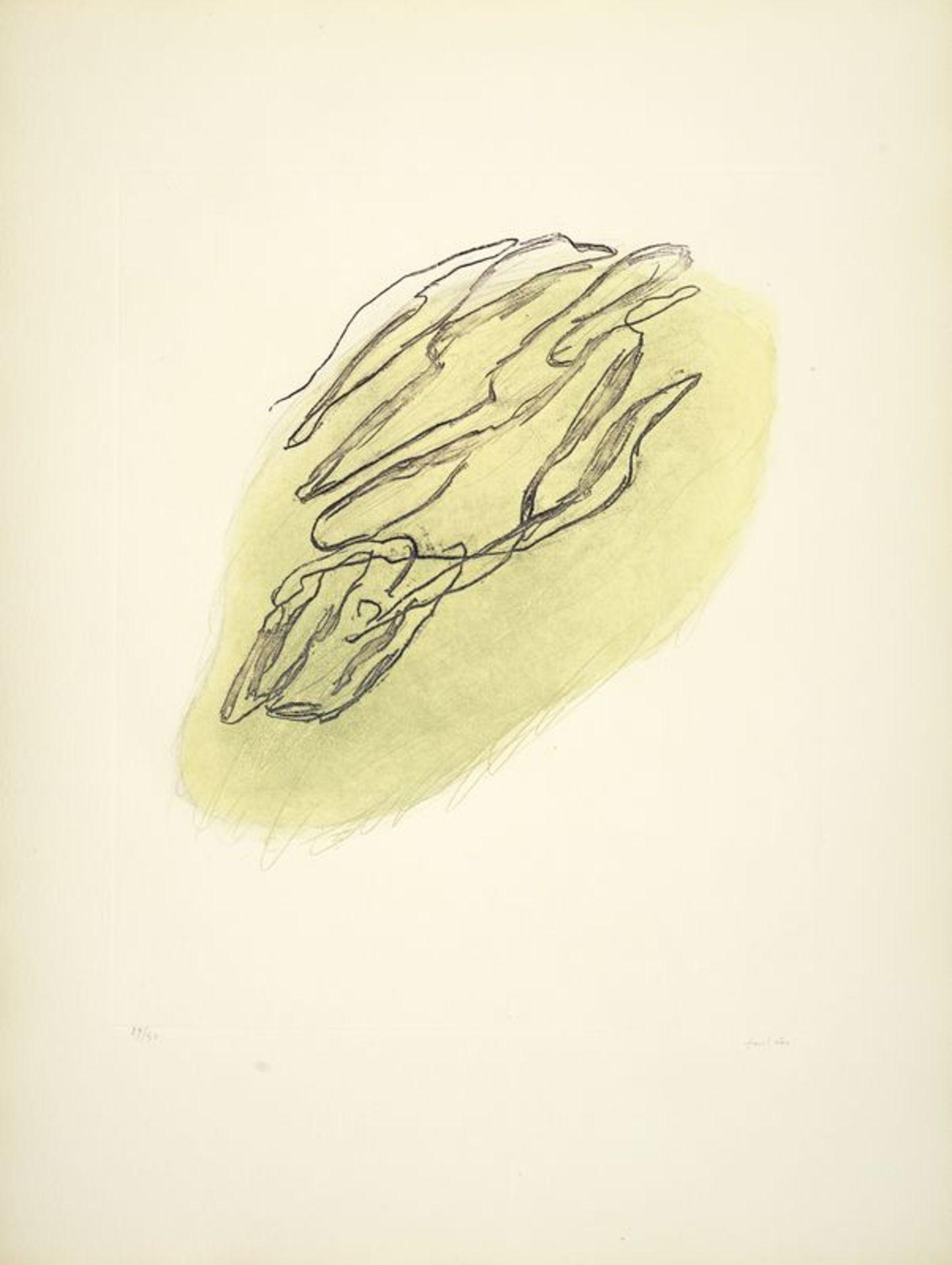 Los 16 - Jean FAUTRIER (1898-1964)- Formes végétales - Eau-forte et aquatinte en couleur sur [...]