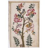 BLOSSOMING TREE WITH BIRDS AND BUTTERFLIES - INDIA, 19th CENTURYMiniature painting with gold and