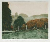Butzmann, Manfred (geb. 1942 in Potsdam, lebt in Potsdam)Landschaft mit ZaunpfählenFarbradierung,