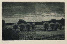 Butzmann, Manfred (geb. 1942 in Potsdam, lebt in Potsdam)KopfweidenRadierung in Grau und Schwarz auf