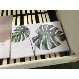 Lot 218 - Leaf Picture (CACA8664 - 12131/23)