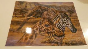 Box of 20 Assorted Animal and Scenery Posters