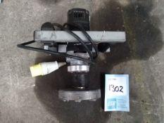 Lot 1302 Image