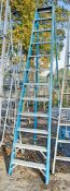 12 tread glass fibre framed step ladder