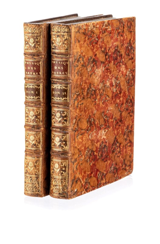Lot 37 - DUHAMEL DU MONCEAU (Henri-Louis). La Physique des arbres... Paris. 1758. 2 vol. in-4° reliés plein v