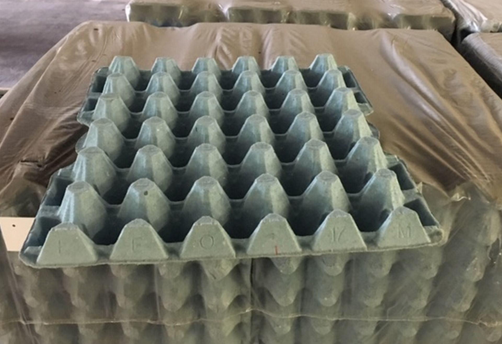 Lot 120 - Pallet of 16 Lots of Egg Containers (36 Eggs) 160 Trays in each Lot.