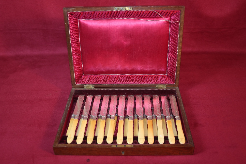 Lot 3 - A cased set of 12 each Victorian bone handled frui