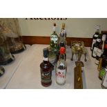 Lot 46 - Twelve bottles of various spirits to include Capta