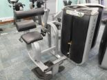 Lot 28 - *Matrix Back Extension Strength Machine