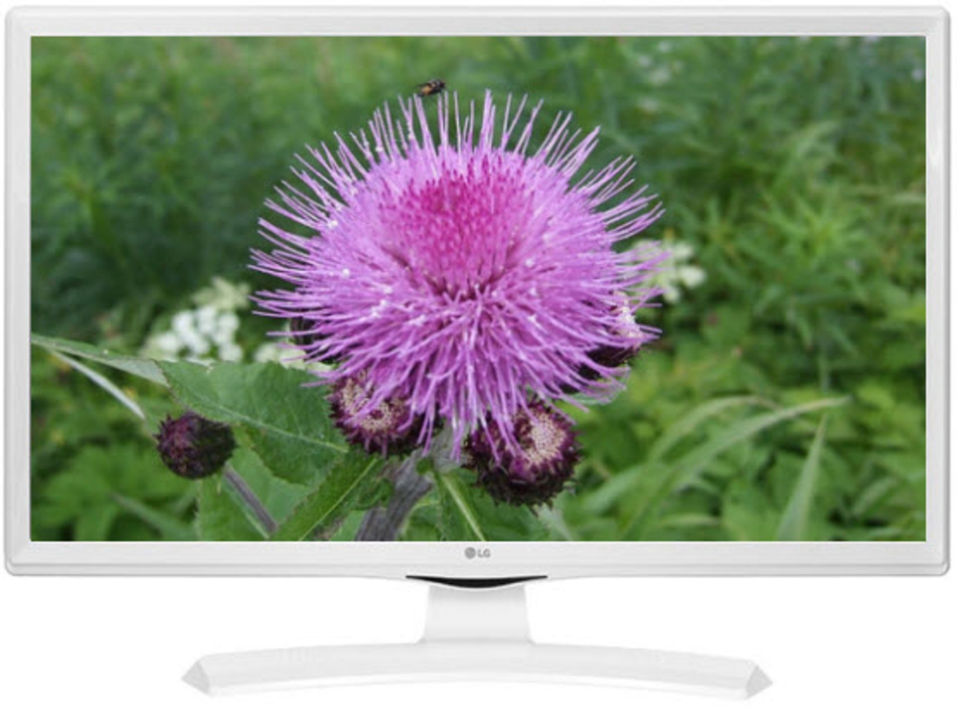 Lot 29931 - V Grade A LG 28 Inch HD READY LED TV WITH FREEVIEW - WHITE 28MT49VW-WZ