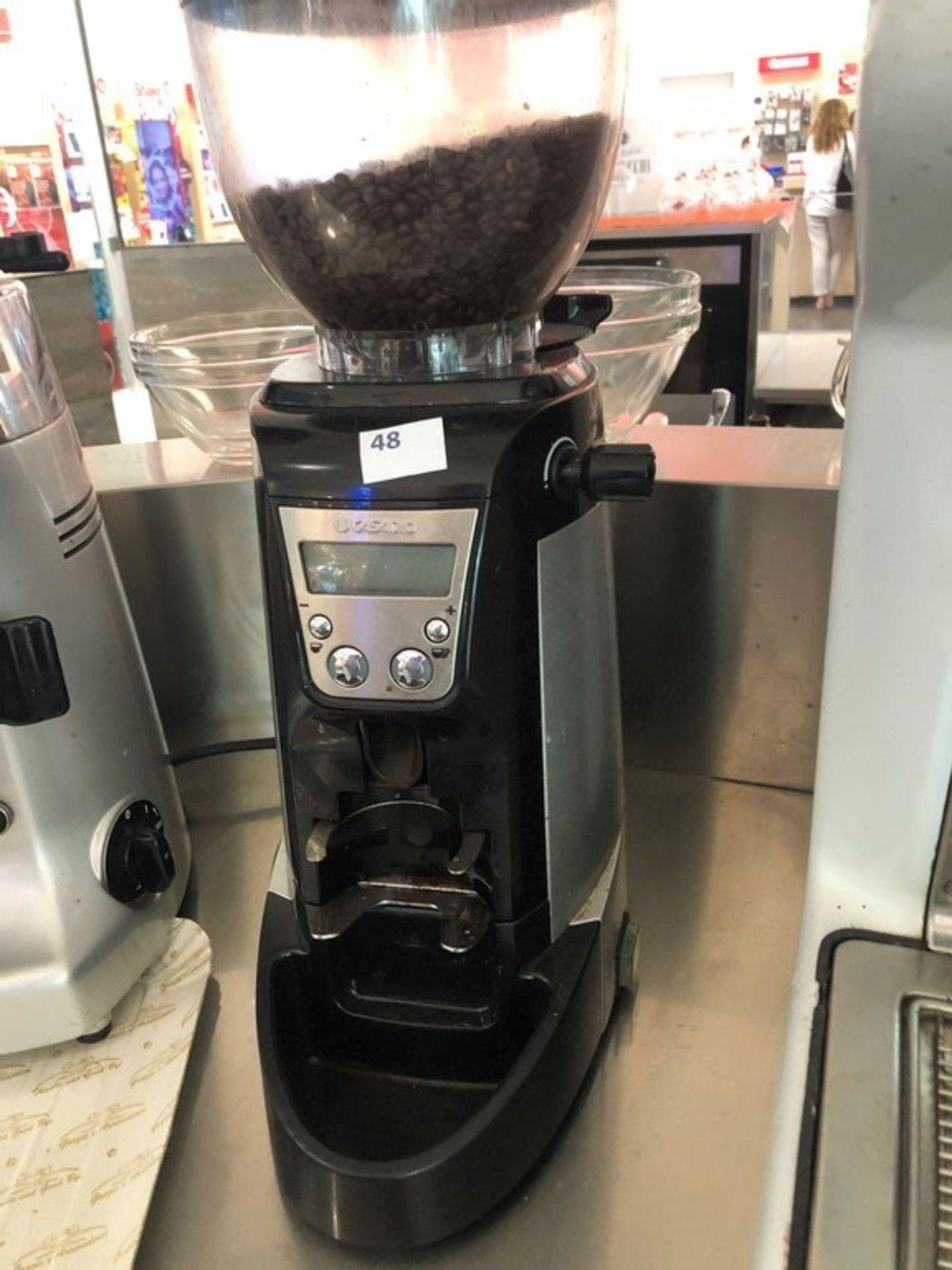 Lotto 50 - N. 48 (FALL. N. 102/19 VR) MACINA CAFFE' CON DOSATORE CASADIO