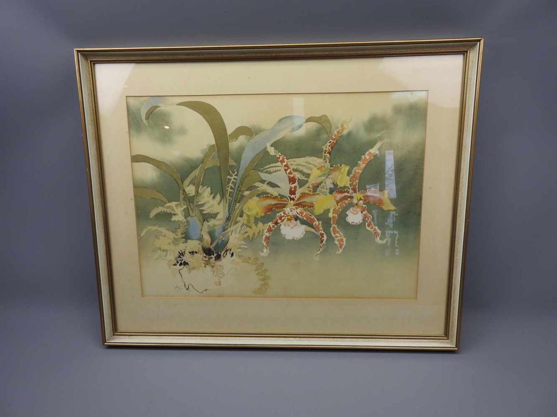Wilde AmaryllisAquarell, Bleistift/Papier. Feines Aquarell mit Blüten, Farnen und Blumenzwiebeln. - Bild 2 aus 2