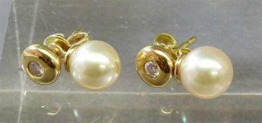 Paar Ohrstecker14 kt. Gelbgold, 2 Brillanten zusammen ca 0,06 ct, wesselton, si, 2 Zuchtperlen, d