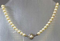 HalsketteSilberschloss, 66 Zuchtperlen, weiß, d 7 mm, l 45 cm,