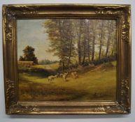 """""""Schafe auf einer Weide, H. SchäferÖl/Leinwand, unten links signiert, Rahmen, Maße mit Rahmen Höhe"""