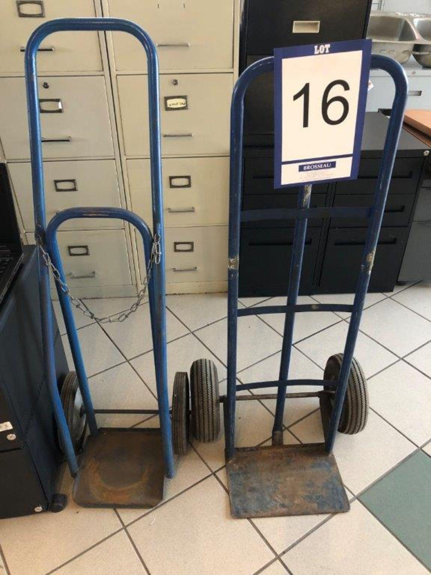 Lot 16 - Lot: 2 diables bleus