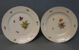 2 Teller, Nymphenburg polychromer Blüten- u. Osier-Reliefdekor 865, flacher bzw. tieferTeller, Dm je