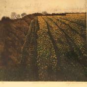 """Hartmann, Wulf. 1942, aufgewachsen in Mehrum b. Peine - 2011 Worpswede. """"Moorlandschaft"""". Farbige"""