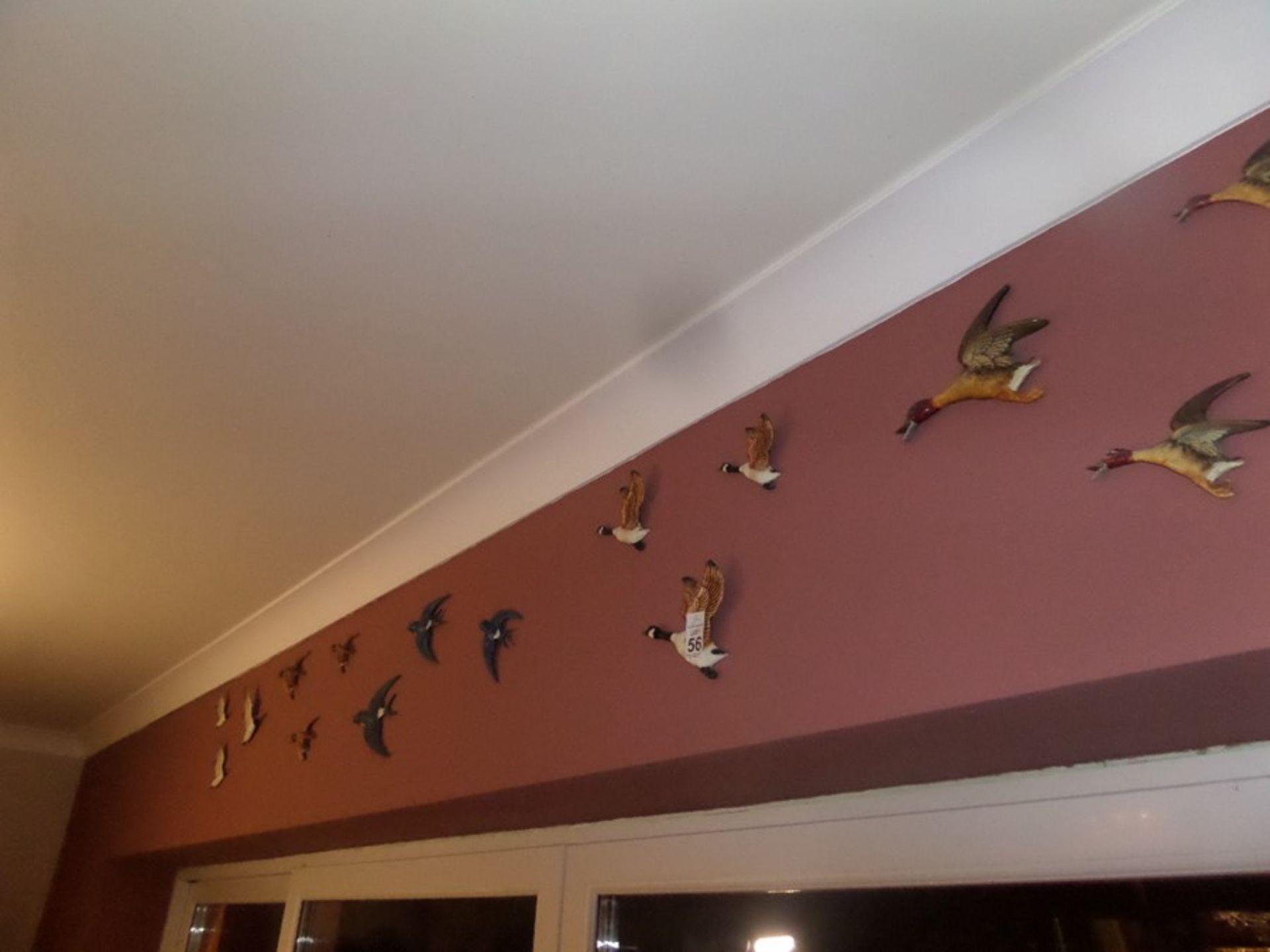 Lot 56 - 15X ASSORTED BIRD WALL HANGING ORNAMENTS