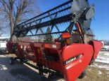 Lot 18 - 2017 Case IH 3020 TerraFlex 20' Grain Platform