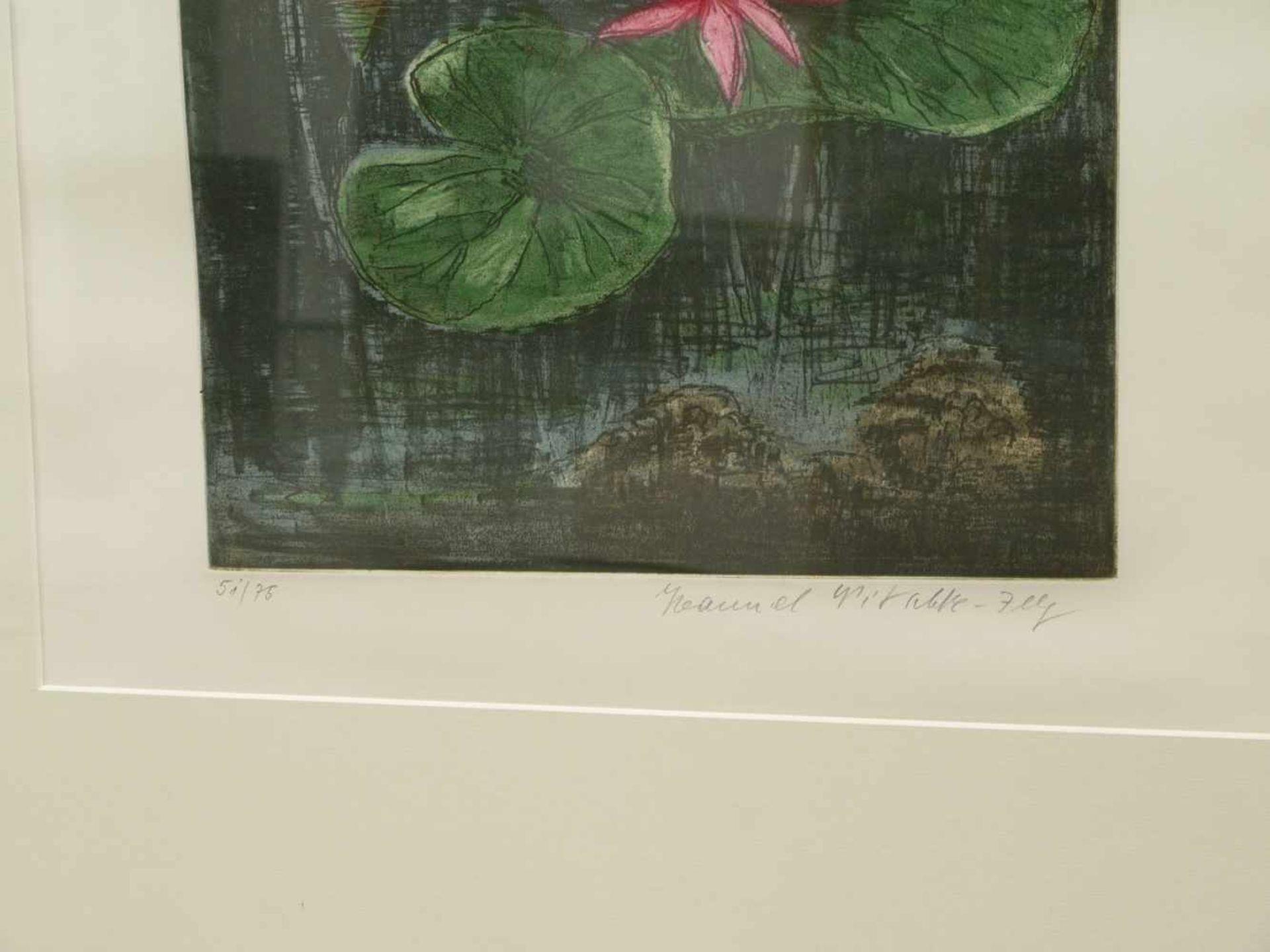 Los 29 - Nitschke-Illg, Hannel (1923) - Seerosen Farbaquatinta 51/75In kräftiger Farbpalette dargestellte