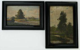 Dotzauer, Franz (19./20. Jhd.) - Paar LandschaftenGefällige Darstellungen idyllischer
