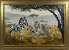 Arendt, Fred (1928) - Zebras in der SavanneEin Paar Zebras mit einem Fohlen, den Betrachter